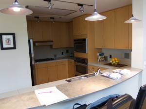 Project Profile, seattle kitchen renovation, remodeling seattle