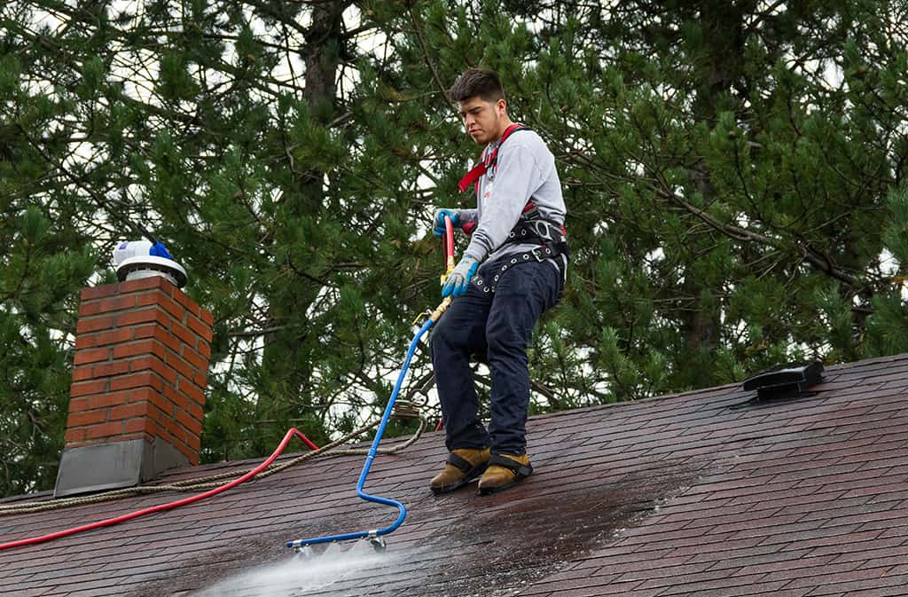 Neil Kelly: handyman in Bend, Eugene, and Portland for roof cleaning and other household tasks